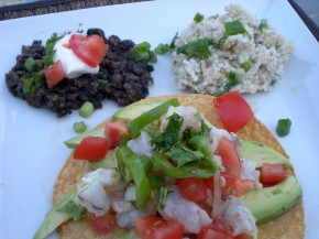 SHRIMP CEVICHE TOSTADAS WITH BLACK BEANS AND CILANTRO RICE
